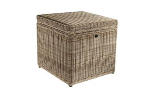 Cosette End Table/Trunk
